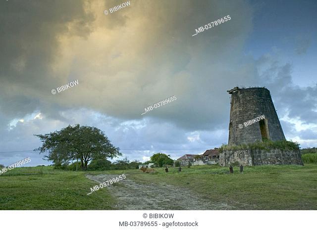 Guadeloupe, Marie Galante Iceland sugarcane plantation ruins