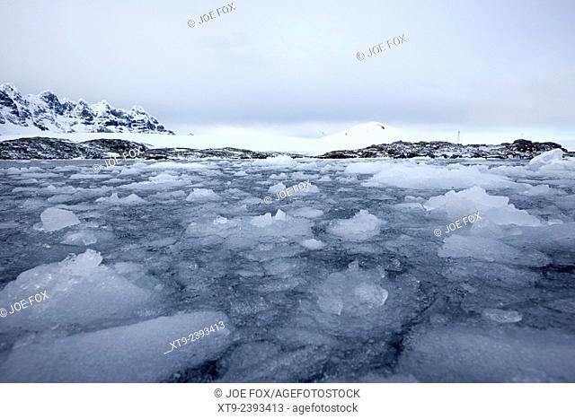 brash sea ice forming winter closing in port lockroy Antarctica