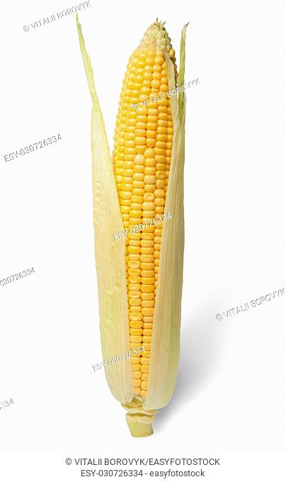 Purified ear of corn with leaves isolated on white background