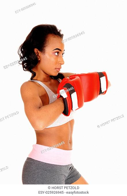 A young pretty African American woman in sportswear, wearing red.boxing gloves, standing in closeup isolated for white background.
