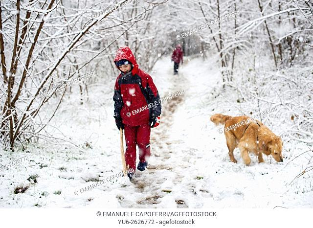 Portrait of children as they walk in the woods under a snowfall