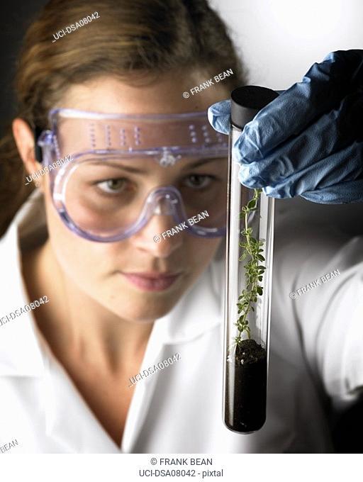 Woman in lab coat examining seedling in test tube