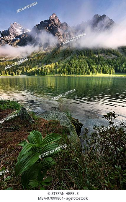 Lake Sils near St. Moritz, Grisons, Switzerland