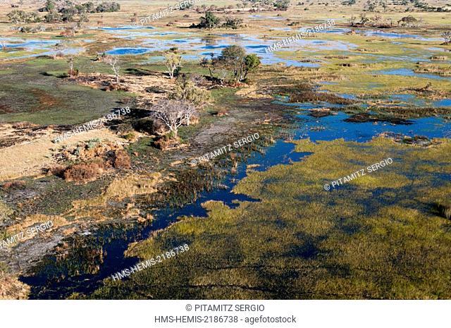Botswana, Okavango Delta (aerial view)