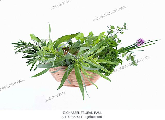 Basket of fresh herbs on a white background