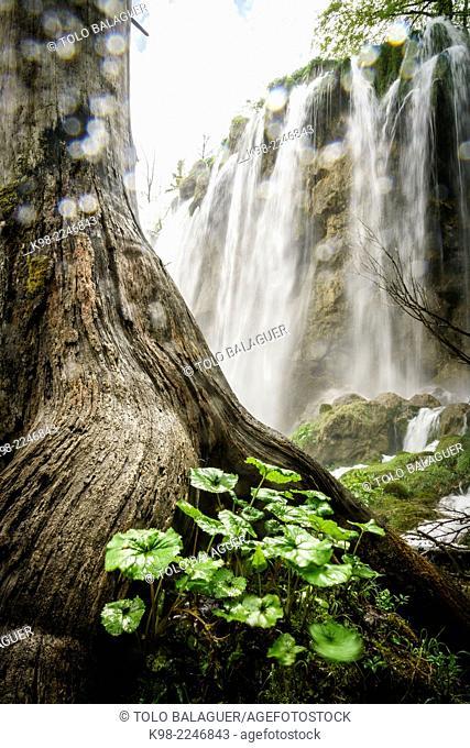 Plitvice Lakes National Park, UNESCO World Heritage, Croatia