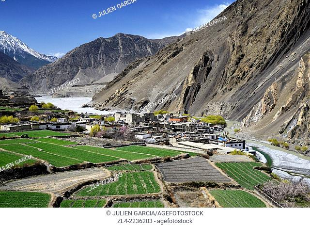 The village of Kagbeni (2800m) surrounded by fields in the valley of the Kali Gandaki river. Nepal, Gandaki, Upper Mustang (near the border with Tibet)