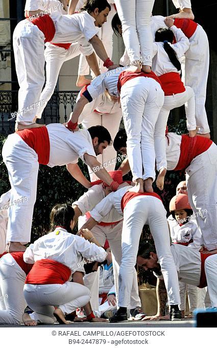 Castell, human towers. February 12, Falcons group. Celebration of Saint Eulalia martyr, 290-303 AD. Canonized 633 AD. Copatron of Barcelona