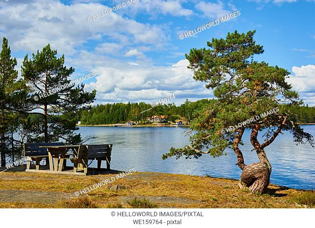 Picnic table in the Ostra Lagno nature reserve on the coast of Ljustero, Stockholm County, Sweden, Scandinavia. . Ljustero is an island in the northern part of...