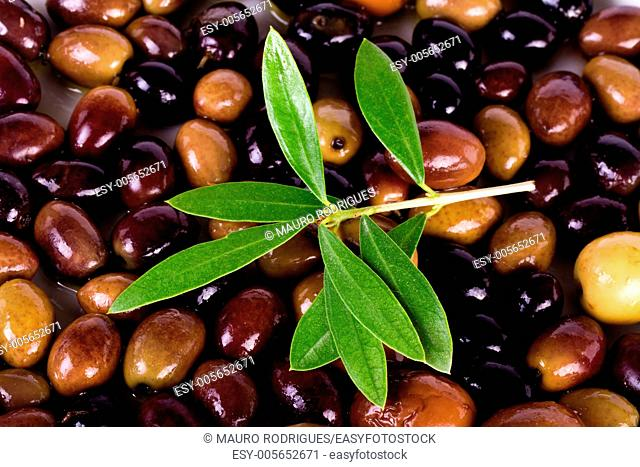 Detail view of some olives on a plate, with leafs from the tree