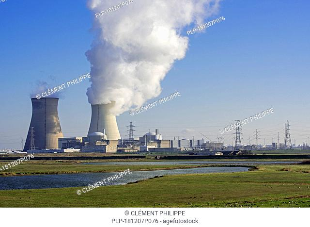 Geese at nature reserve Prosperpolder and the Doel Nuclear Power Station / nuclear power plant in the Antwerp harbour, Flanders, Belgium