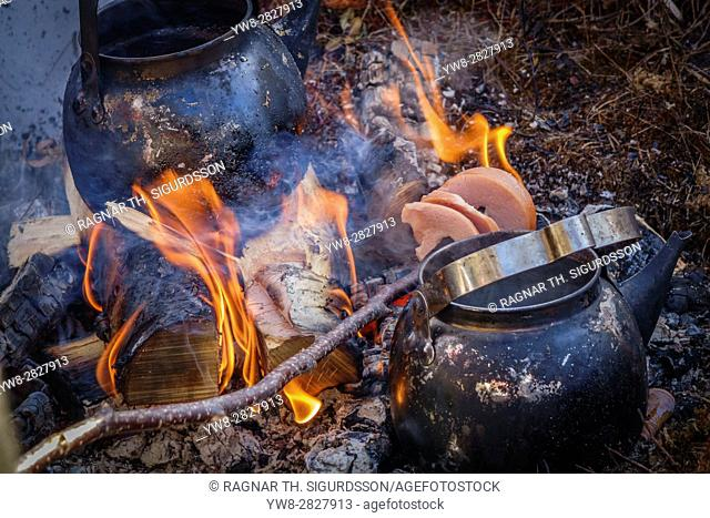 Campfire with Reindeer Sausage, Lapland Guesthouse in Kangos, Lapland, Swedenâ. ¨