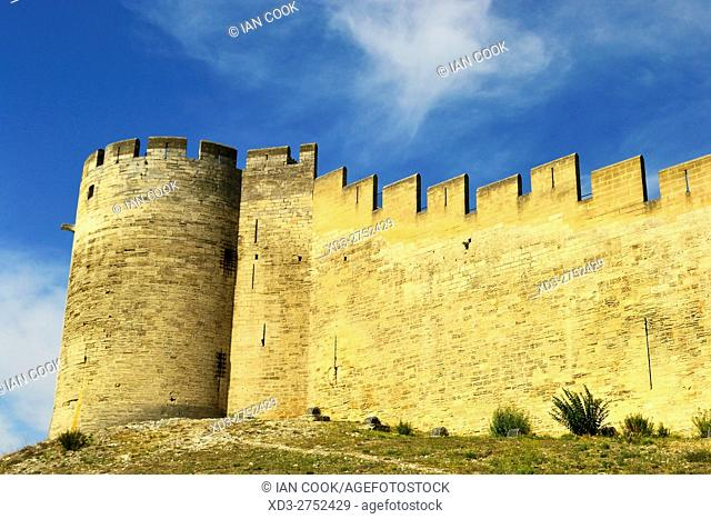 Fort Saint Andre, Villeneuve-lez-Avignon, Vaucluse Department, Provence, France