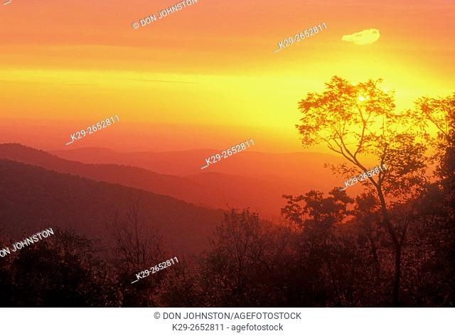 Dawn skies over Virginia mountain ranges, Shenandoah National Park, Virginia, USA