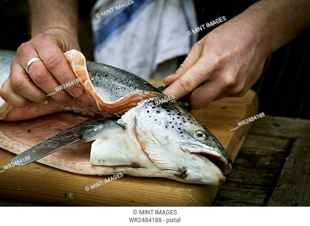 Close up of a chef filleting a fresh salmon