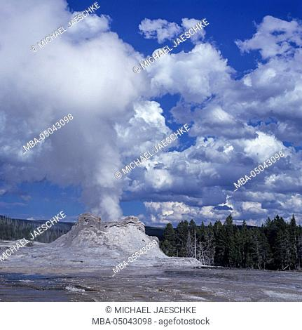 Castle Geyser, Yellowstone National Park