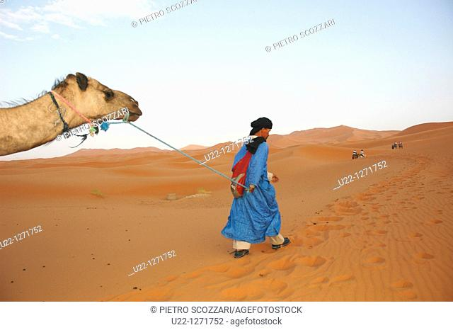Merzouga Dunes (Morocco): a camel used for tourists pulled by a Tuareg man in the desert