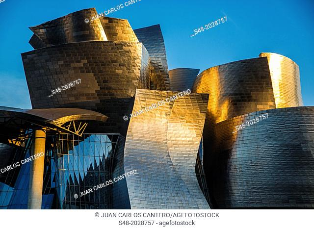 Guggenheim Museum in Bilbao. Basque Country. Spain. Europe