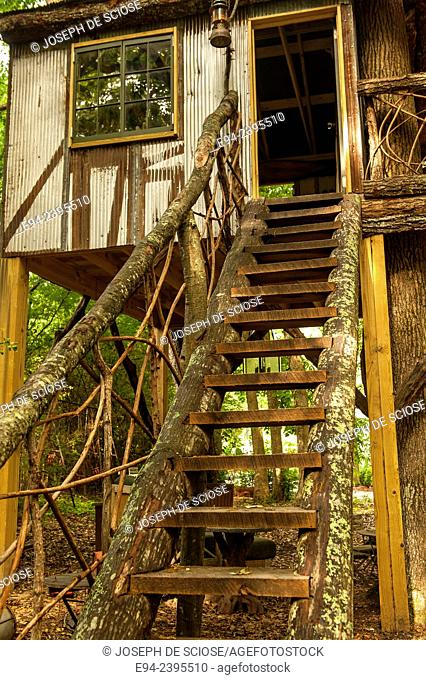 A wooden stairway to a tree house in the garden.Georgia USA