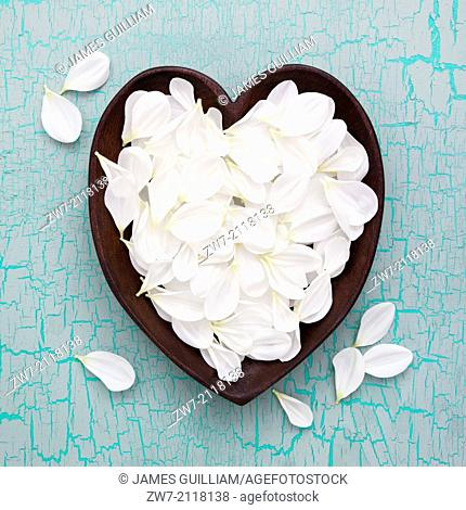 White Dahlia petals in wooden heart