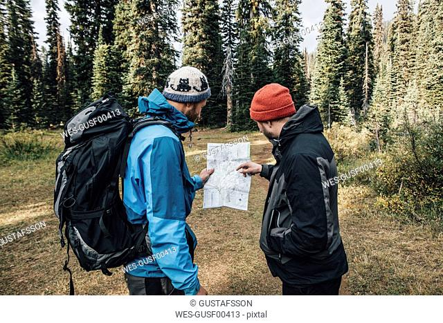 Canada, British Columbia, Yoho National Park, two hikers reading map at Mount Burgess