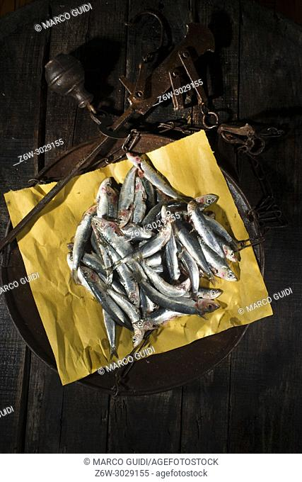 Presentation of the portion of raw anchovies in an old scale dish