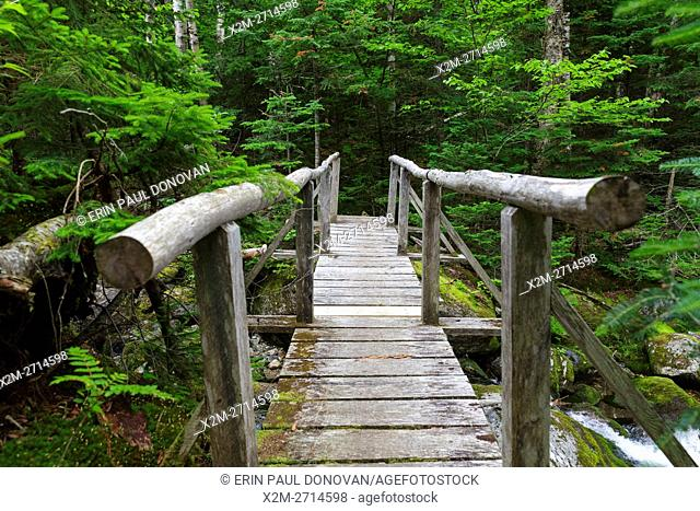 The Sanders Bridge along the Randolph Path in Low and Burbank's Grant, New Hampshire during the summer months. This footbridge crosses Cold Brook
