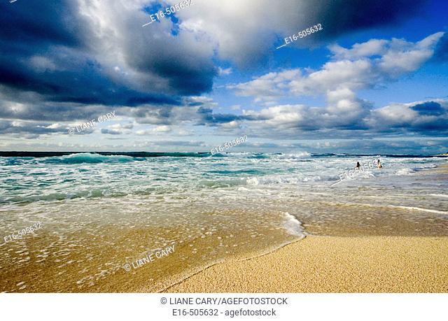 Beach girls, Hawaii. USA