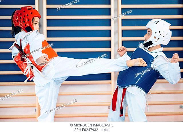 Children sparring in taekwondo class