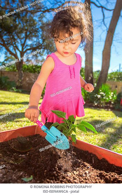 Young girl in garden, planting plant in tub, holding trowel