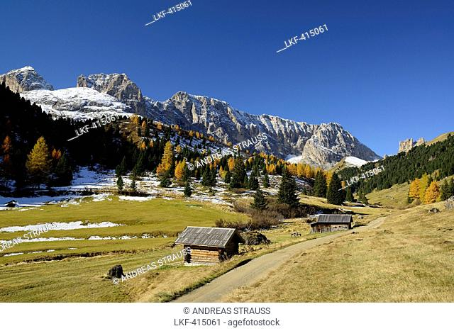 Path leading through Duron valley with Rosengarten range in the background, Duron valley, Fassa valley, Rosengarten range, Dolomites