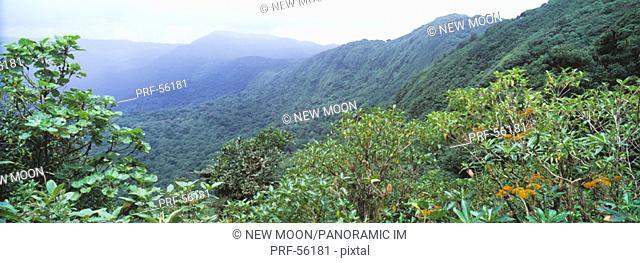 Continental Divide Monteverde Costa Rica