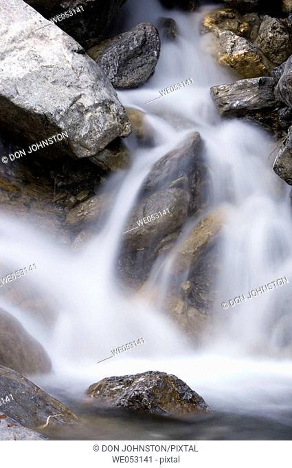 Waterfall on Wilcox Creek near Icefields Campground. Jasper National Park, Alberta