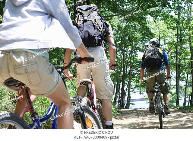 Mountain bikers riding through woods, rear view