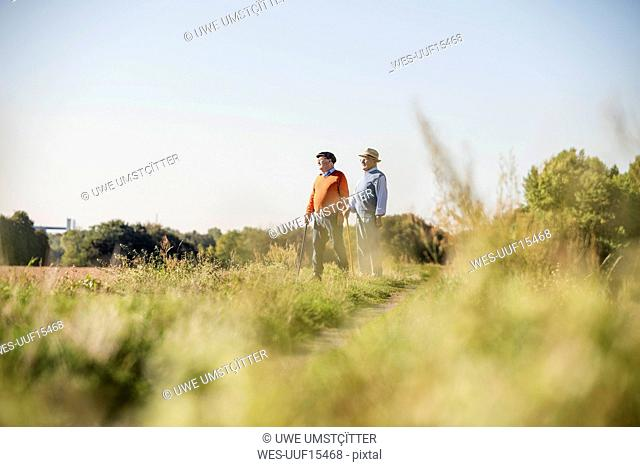 Two old friends taking a stroll through the fields, talking about old times