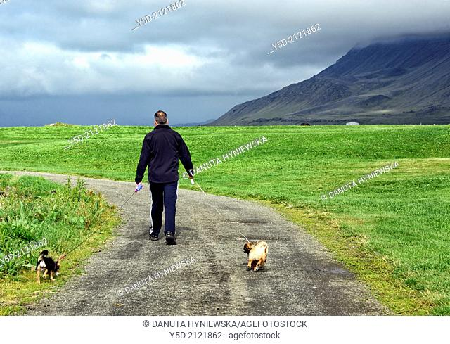 Single man walking with two dogs, empty path along seaside close to Akranes, Western Regions, Iceland