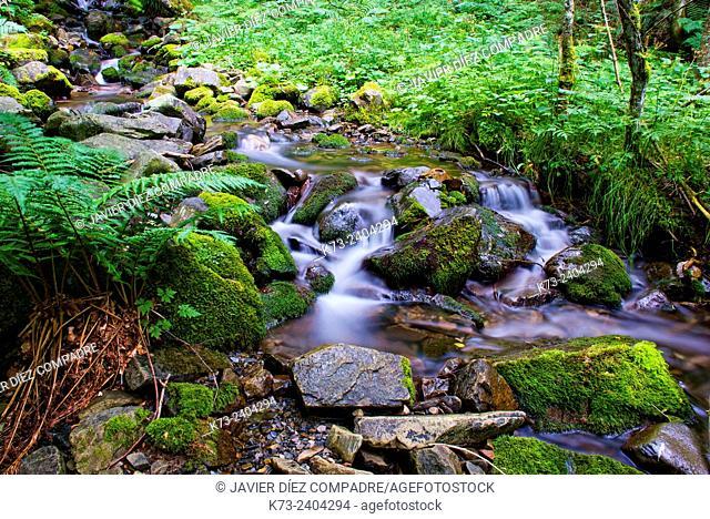 Waterfall. Santa Cruz del Valle Urbion. Sierra de la Demanda. Burgos Province. Castilla y Leon. Spain