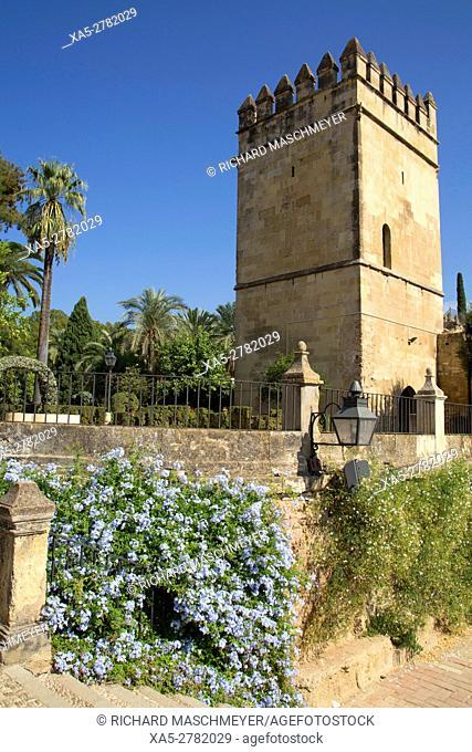 Garden Pool (foreground), Torre de los Leones (background), Alcazar de los Reyes Cristianos, Cordoba, Spain