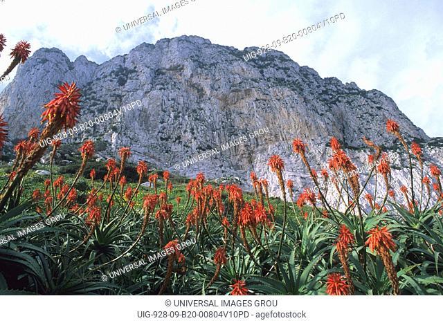 United Kingdom, Rock Of Gibraltar