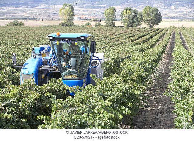 Combine harvester. Vintage. Haro. La Rioja. Spain