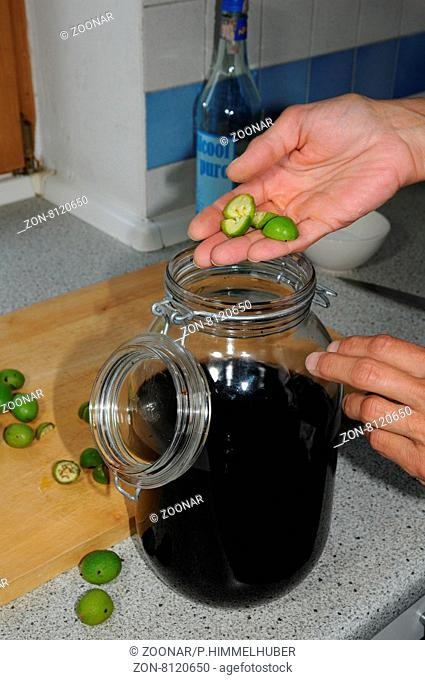 Walnuss-Likör zubereiten, Nüsse dazu geben