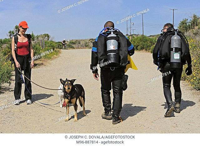 Scuba divers walk toward beach, Malibu, California, USA