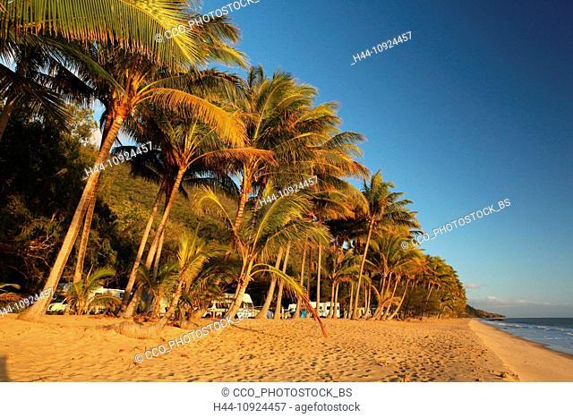 Ellis Beach Tropics Seas Coast Palms Camping Site