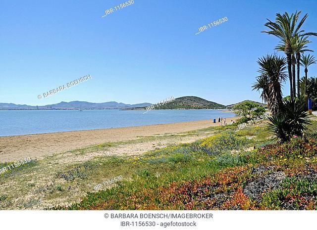 Beach, shore, lagoon, inland sea, La Manga, Mar Menor, Murcia, Spain, Europe