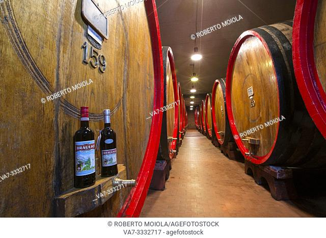 Bottles of liquor Amaro Braulio and oak barrels in the cellar, Bormio, Sondrio province, Valtellina, Lombardy, Italy