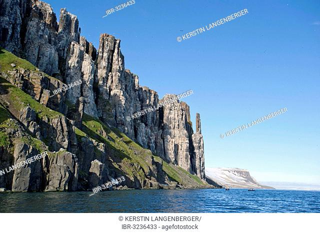 Alkefjellet bird cliffs, inhabited by tThick-billed Murres or Brünnich's Guillemots (Uria lomvia)