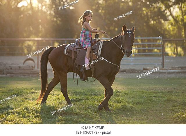 Girl 8-9 riding horse in paddock