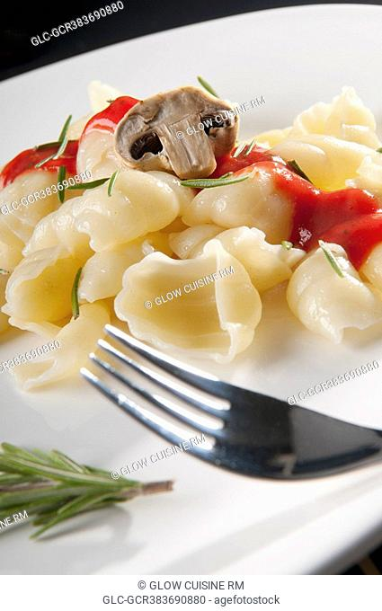 Close-up of conchiglie pasta with mushrooms