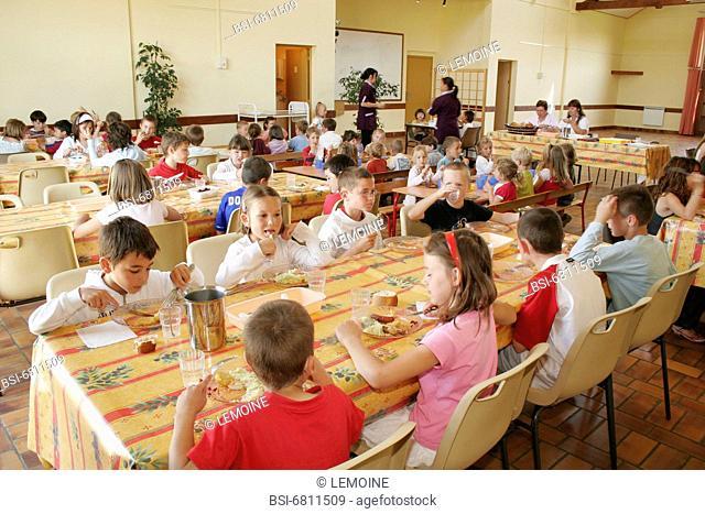 Photo essay in a school canteen. School canteen, classes of kindergarten and primary school