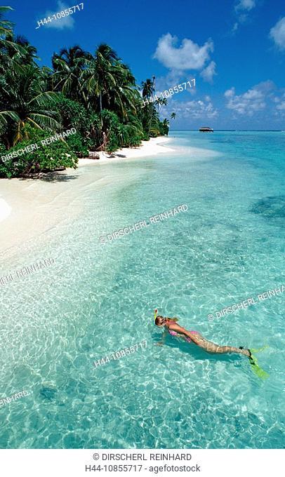 10855717, Maldives, Indian Ocean, Medhufushi, Meem